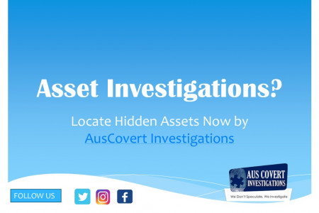 Asset Investigations by private investigator Sydney Infographic