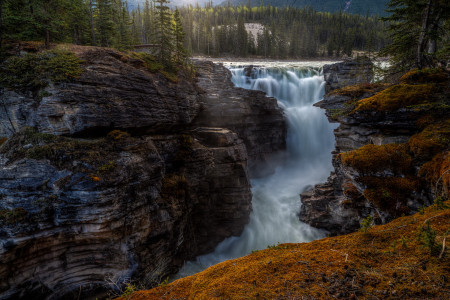 Athabasca Falls, Alberta Canada Infographic