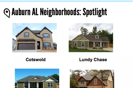 Auburn AL Homes and Real Estate Infographic