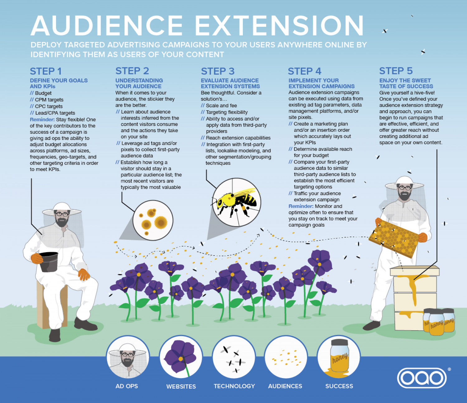 Audience Extension Infographic