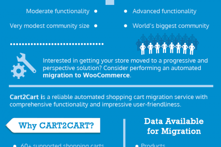 Automated Network Solutions to WooCommerce Migration Infographic