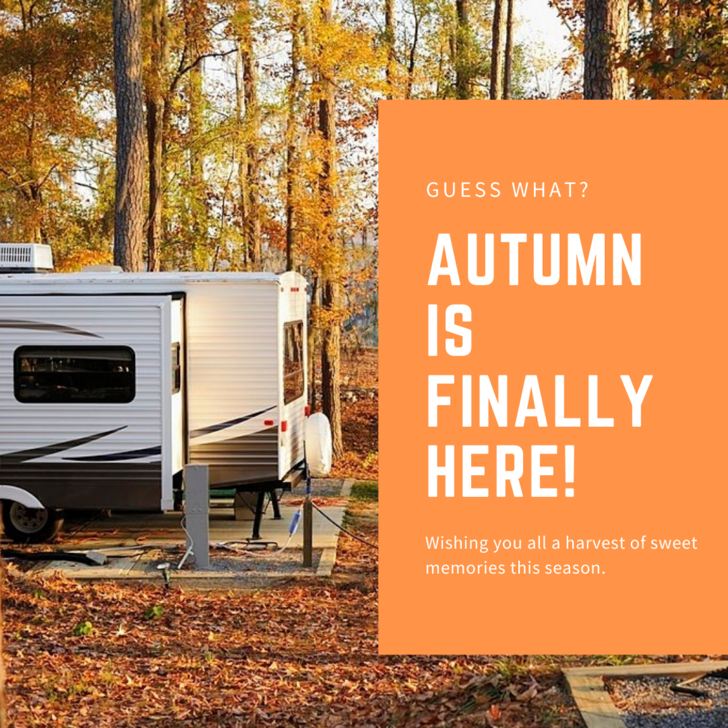 Autumn is finally here! Infographic