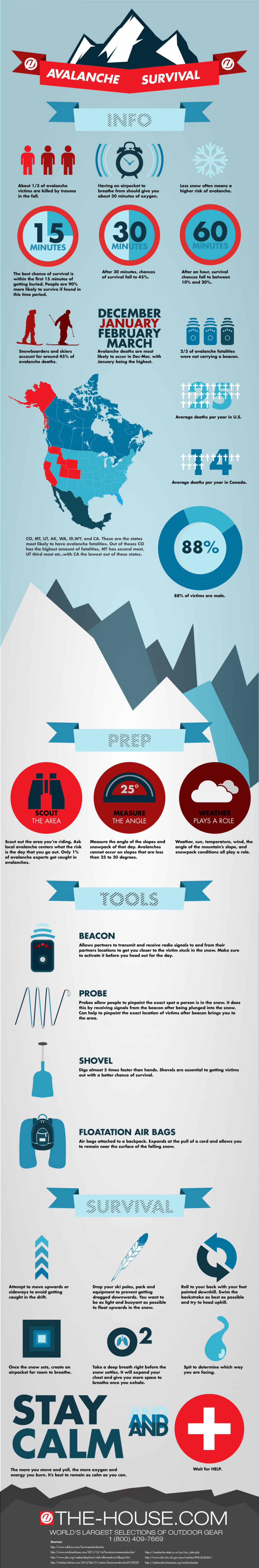 Avalanche Survival Infographic