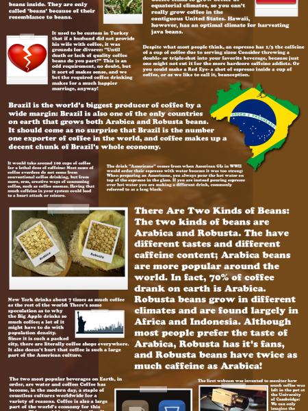 Awesome Facts about Coffee Infographic