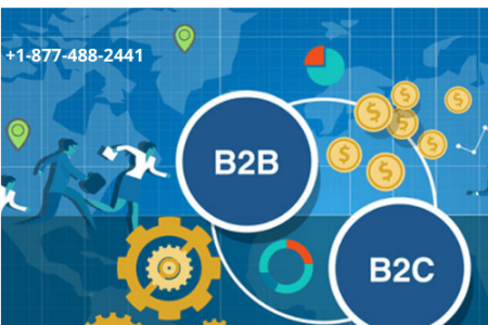 B2B Portal Development Services - Flexible and Affordable Infographic