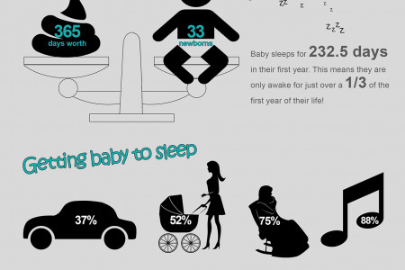 Baby 1st Year Infographic