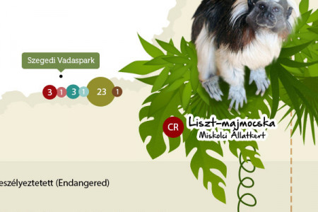 Baby animals born in Hungary Infographic