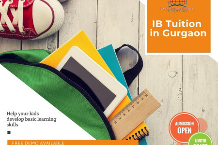 Baccalaureate Classes - IB Tutor in Gurgaon / Delhi Infographic