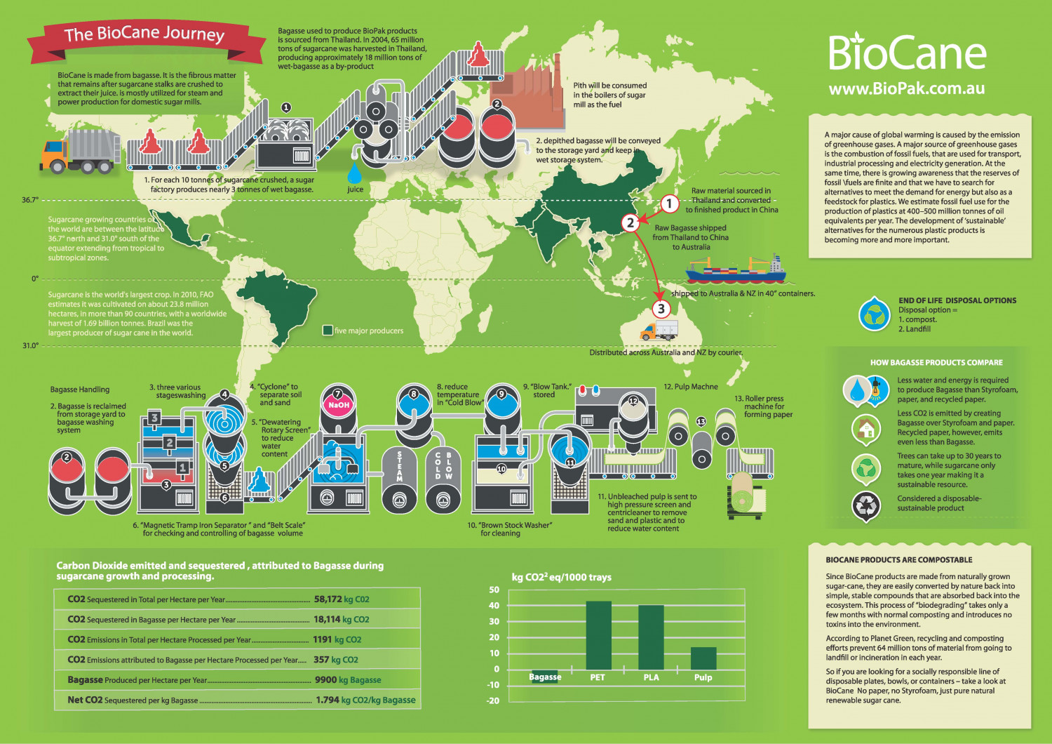 Bagasse Packaging Infographic