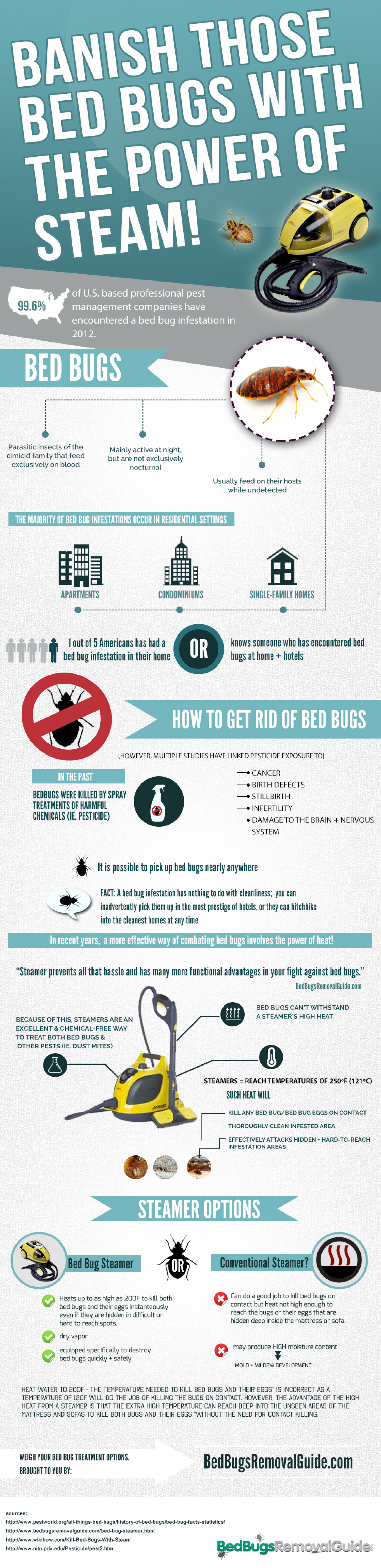 Banish Those Bed Bugs With The Power of Steam! Infographic