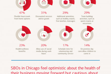 Bank of America Small Business Owner Report: Chicago Local Breakdown Infographic