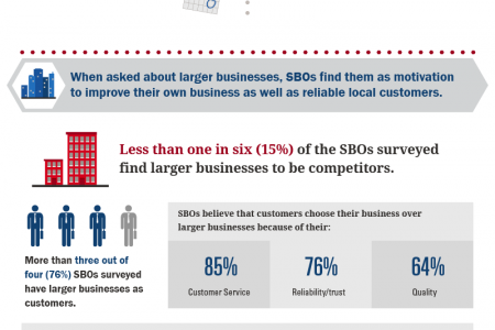 Bank of America Small Business Owner Report: Dallas Local Breakdown Infographic