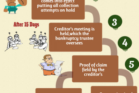 Bankruptcy Process Infographic