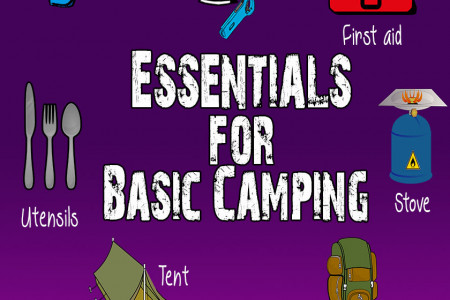 Basic Camping Essentials Infographic