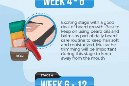 Beard Growth Stages Infographic