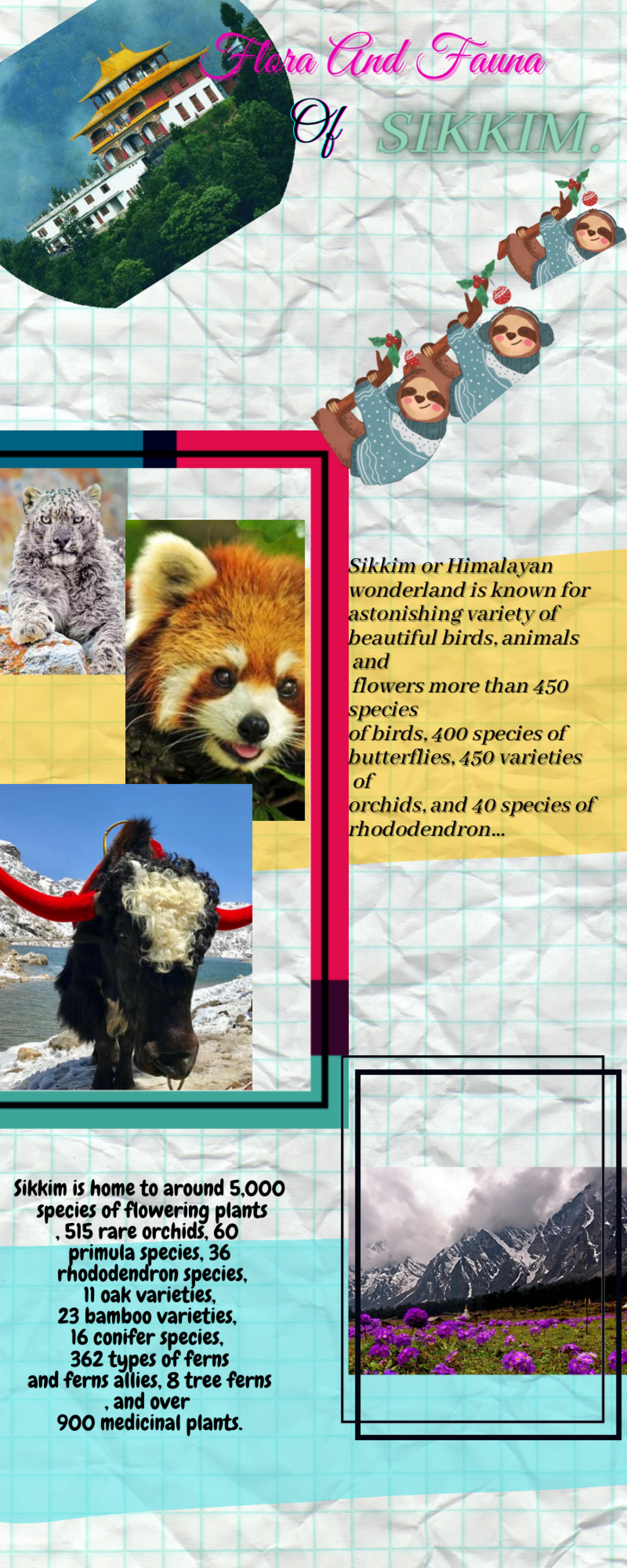 BEAUTY OF SIKKIM  Infographic