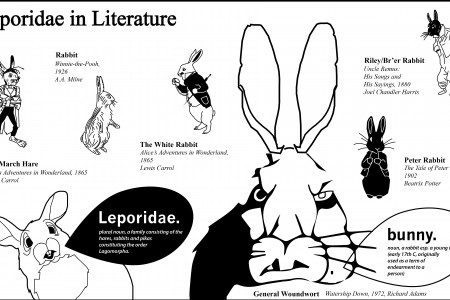 Leporidae in Literature Infographic
