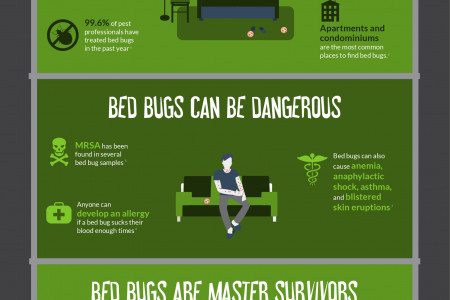 Bed Bugs: Your Terrifying Roommates Infographic