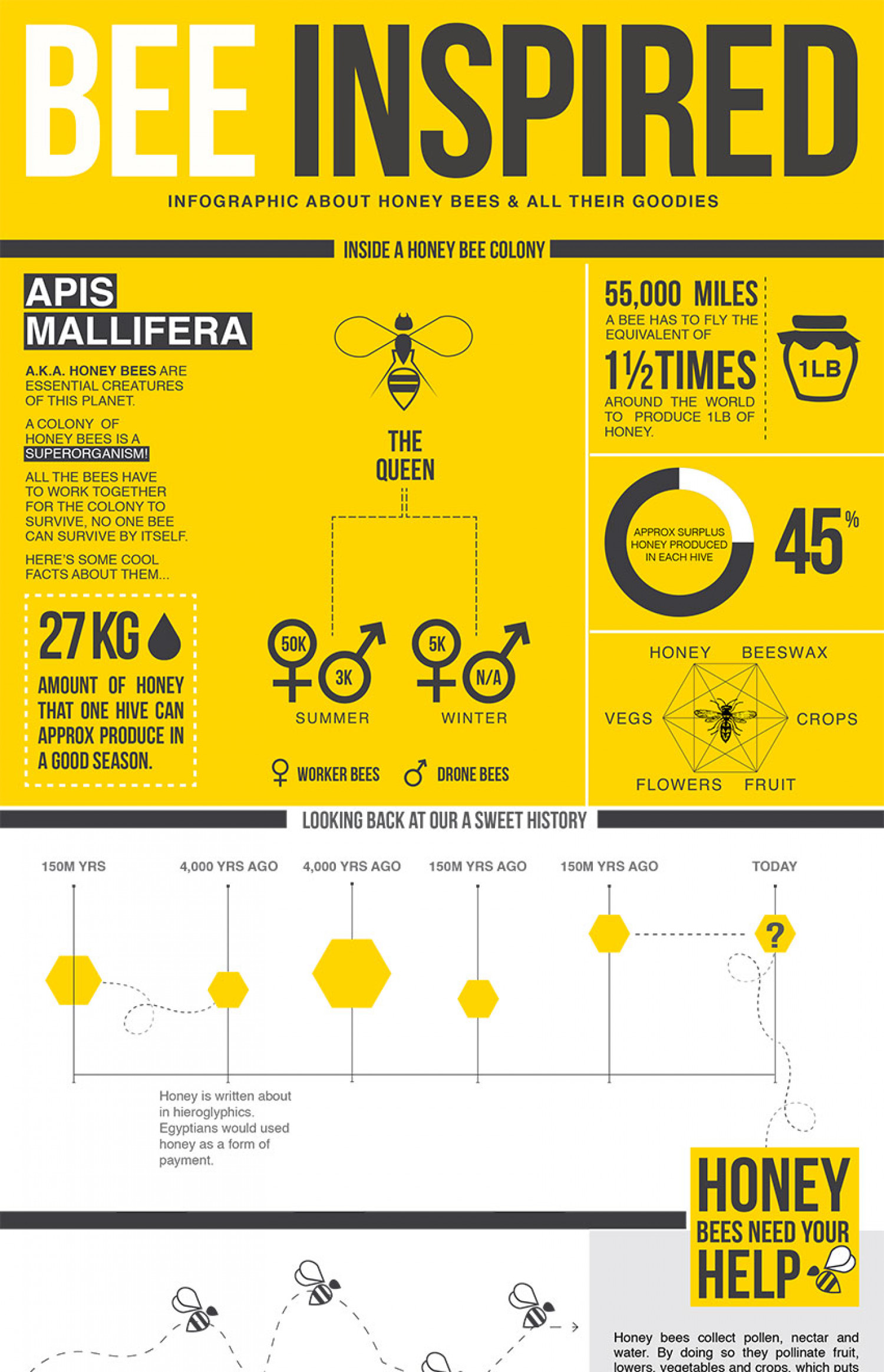 Bee Inspired   Infographic Infographic