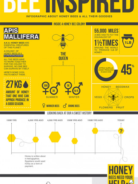 Bee Inspired - Infographic Infographic