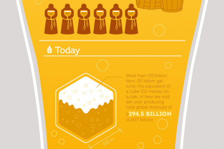 Beer Facts Infographic
