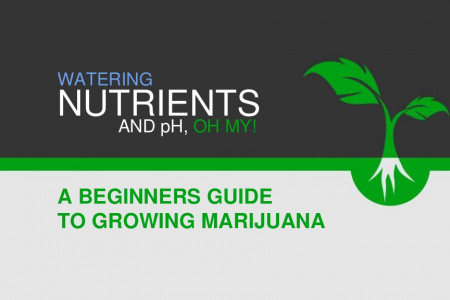 Beginner Cannabis Growers: Watering, Nutrients, and pH, Oh My! Infographic