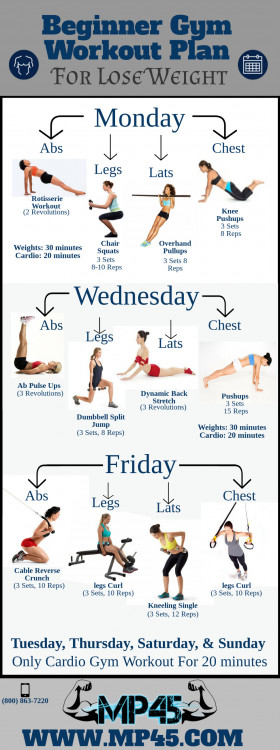 Beginner Gym Workout Plan For Lose Weight