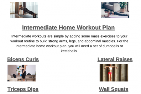Beginner Intermediate and Advanced Home Workout Plans Infographic