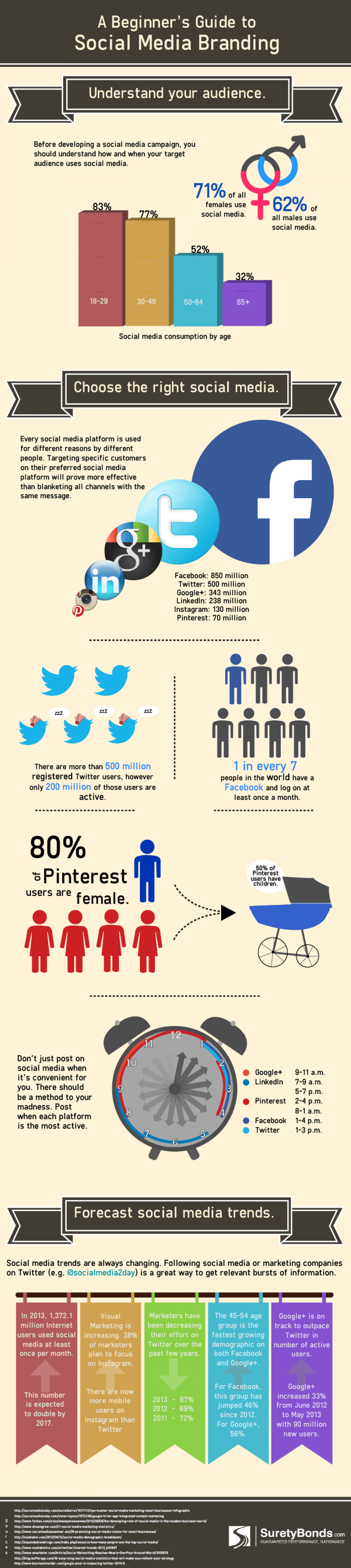 Beginner's Guide to Social Media Branding Infographic
