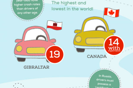 Behind The Wheel: World's Driving Laws Infographic