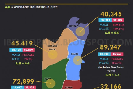 Belize 2010 Population and Housing Census [Infographic] Infographic