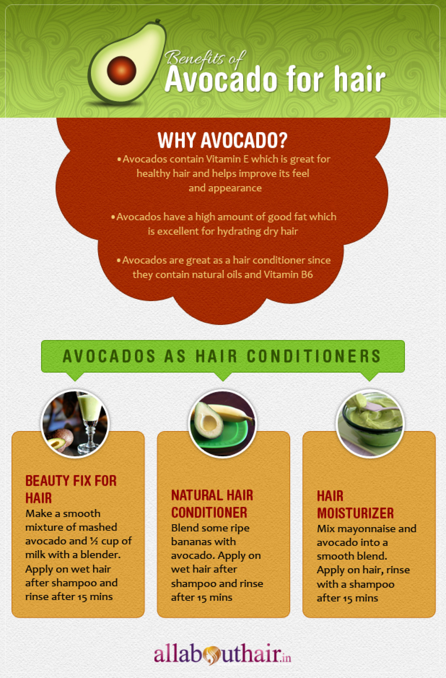 Benefits of Avocado for hair Infographic