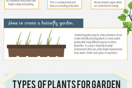 Benefits of Butterfly Gardening Infographic
