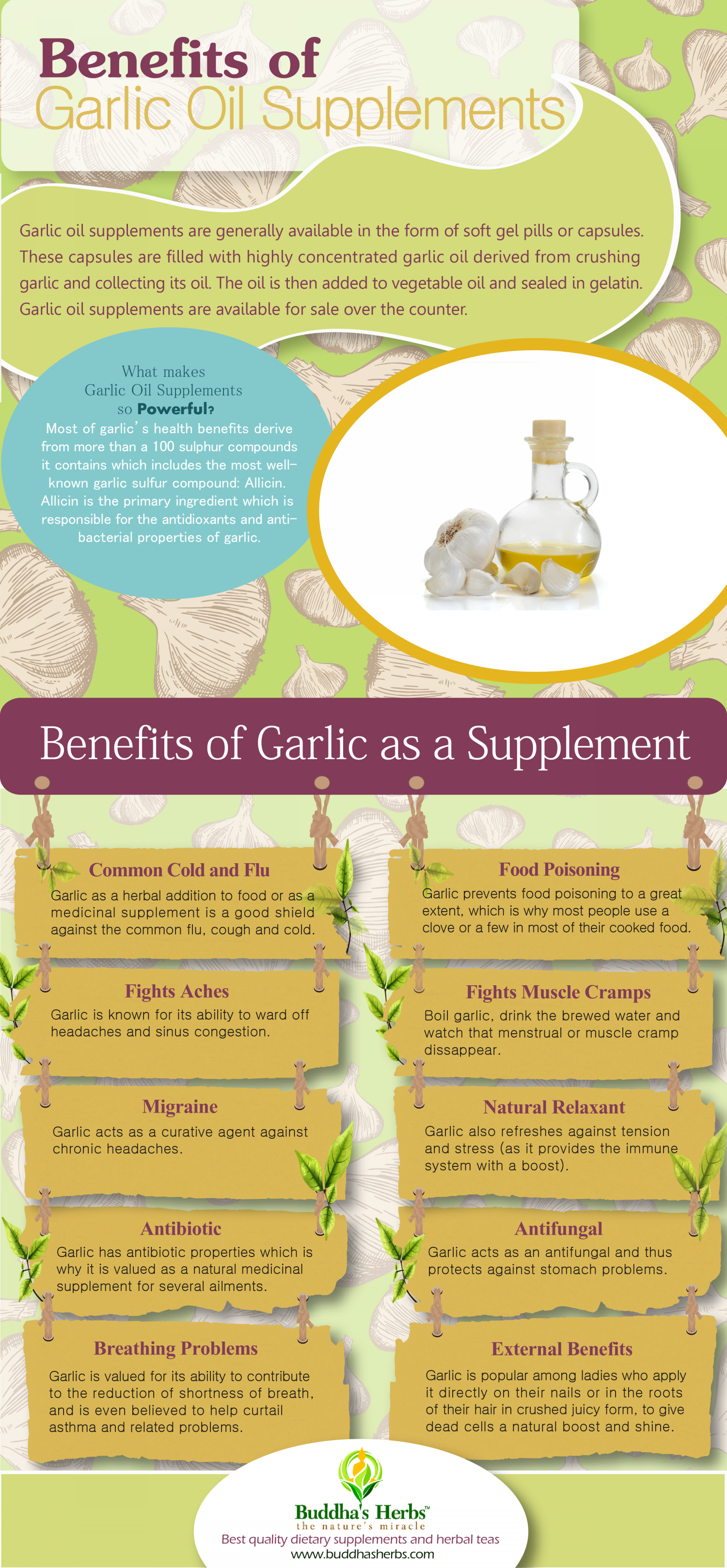 benefits of garlic oil supplement – infographic | visual.ly