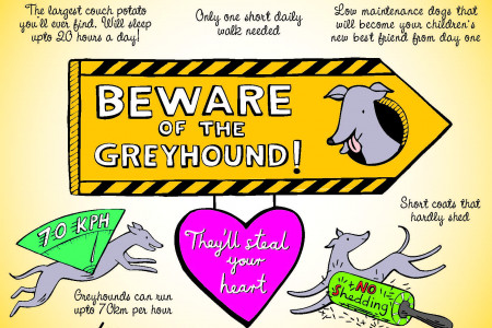 Benefits of Greyhound Ownership Infographic