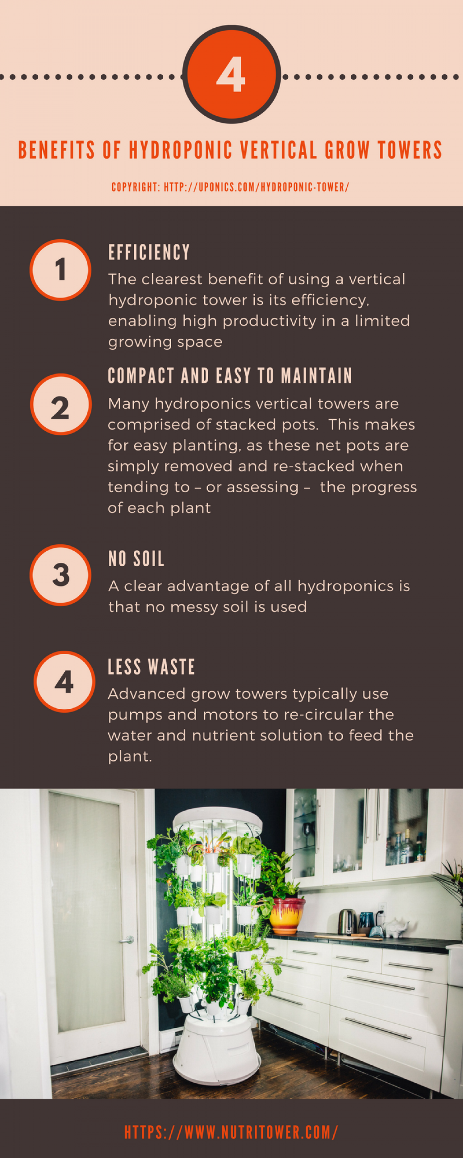 Benefits of Hydroponic Vertical Grow Towers Infographic
