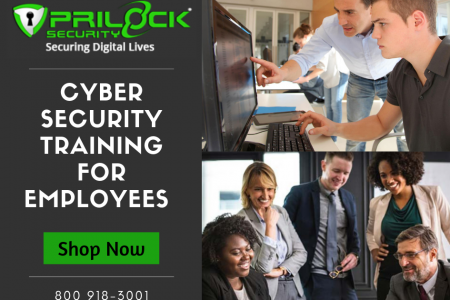 Best Cyber Security Training for Employees - Prilock Infographic