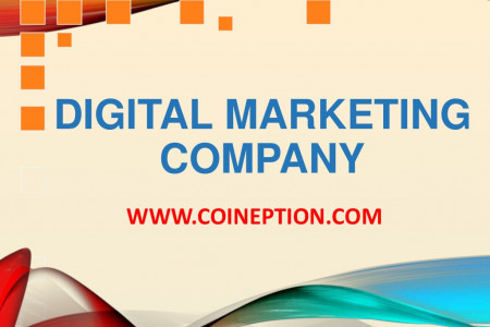Best Digital Marketing Company in Delhi NCR India Infographic