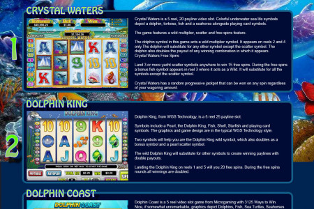 Best Dolphin Slots Infographic