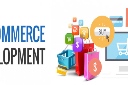 Best Ecommerce Solution in Delhi NCR - Stonehenge Infographic