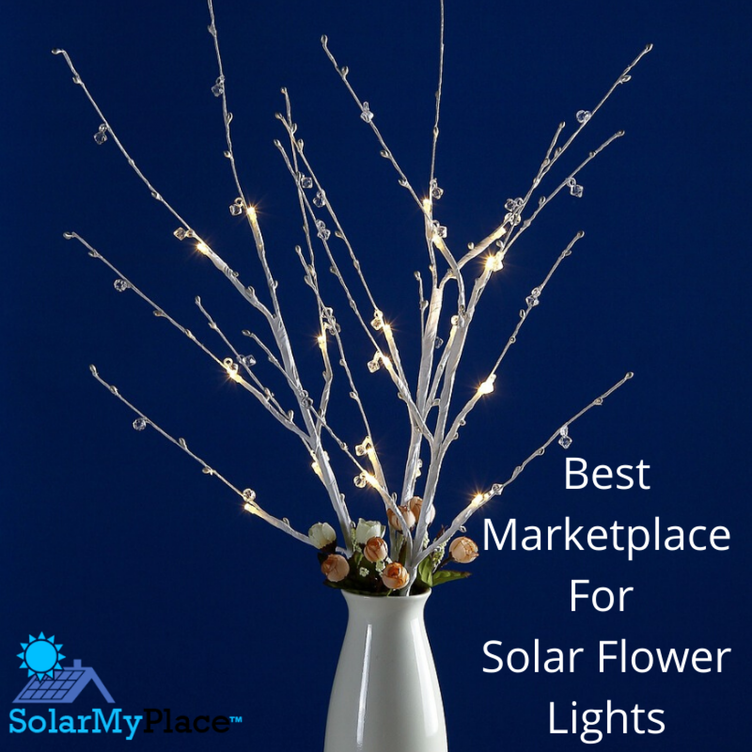 Best Marketplace For Solar Flower Lights - Solarmyplace.org Infographic
