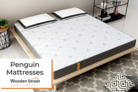 Best Mattress in India 2020 | Mattresses for Back Pain by Wooden Street Infographic