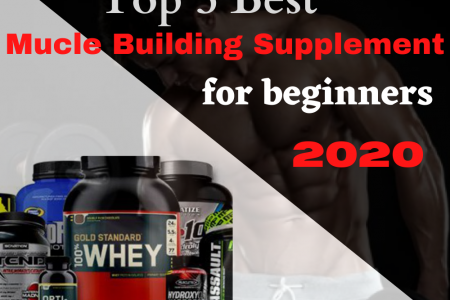 Best Muscle Building Supplement for Beginners 2020 Infographic