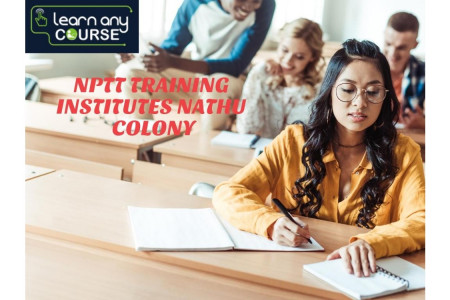 Best NPTT Institutes Nathu Colony Infographic