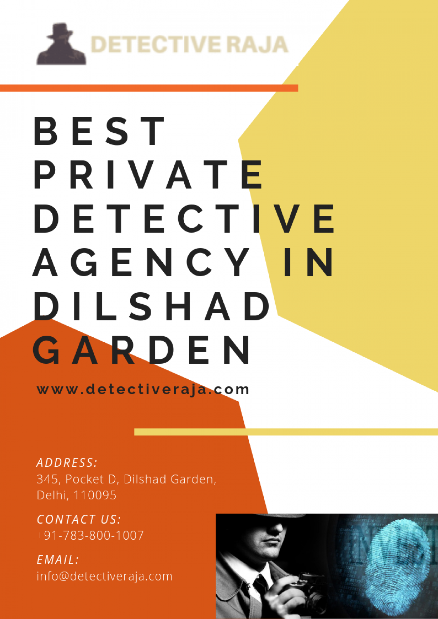 Best Private Detective Agency In Dilshad Garden Infographic