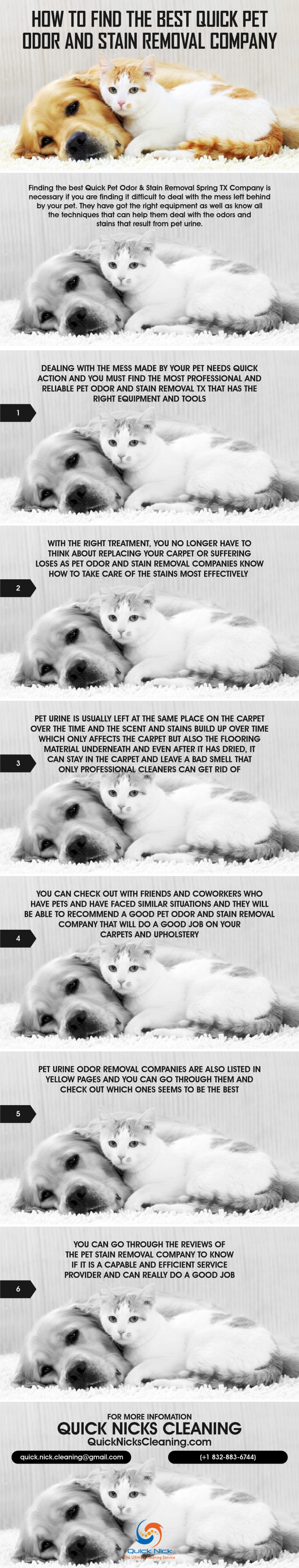 Best Quick Pet Odor and Stain Removal Company Infographic