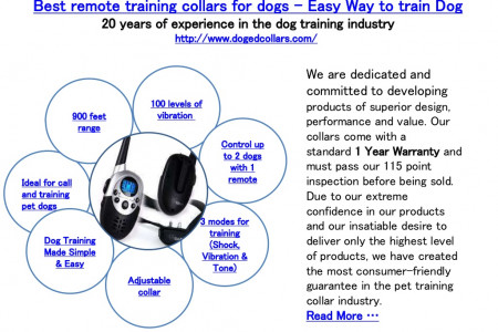 Best remote training collars for dogs – Easy Way to train Dog Infographic