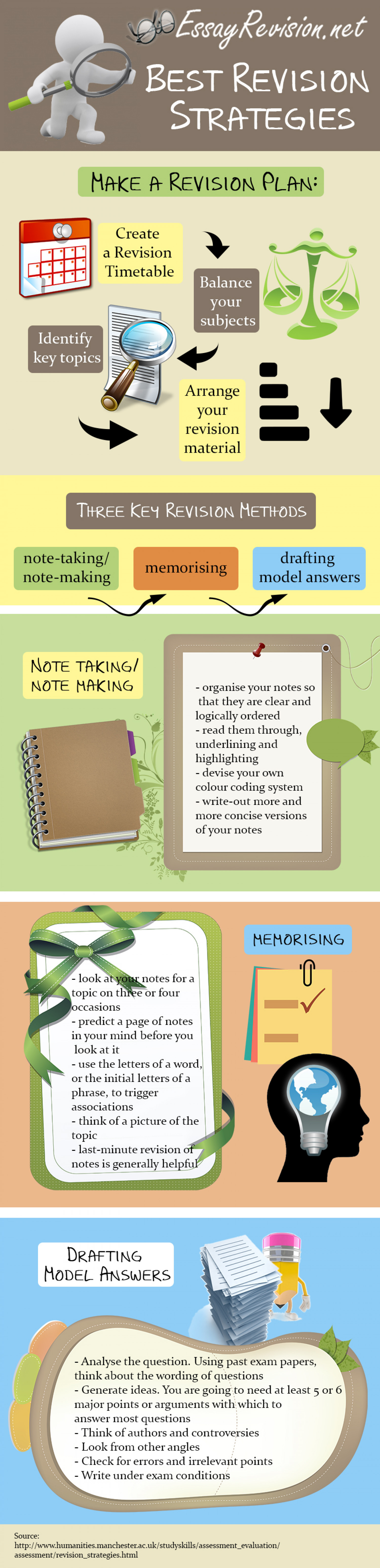 Best Revision Strategies Infographic