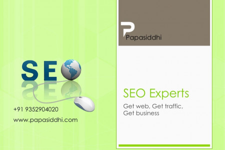 Best SEO Company in Udaipur Infographic