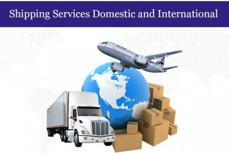 Best Shipping Services in Delhi Infographic